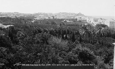 Jaffa and its orange groves pre-1914